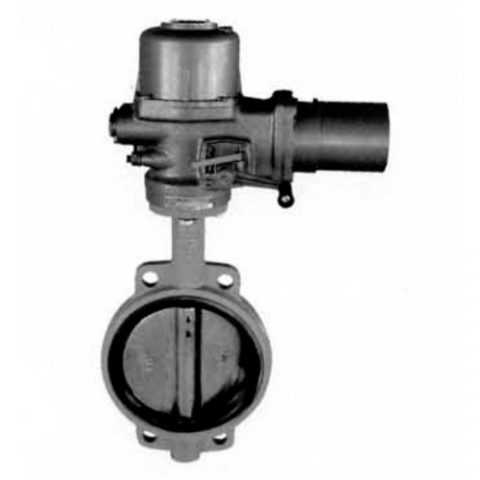 Cast Steel Butterfly Valves 1