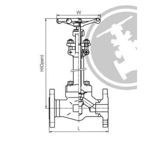 Cryogenic Globe Valves CL150-CL300-CL600 LBS
