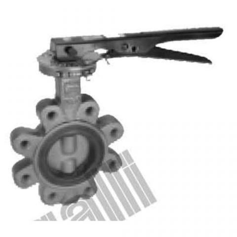 Lug Type Cast Iron Butterfly Valves
